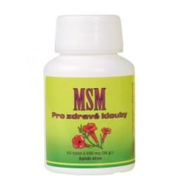 MSM - pro zdravé klouby